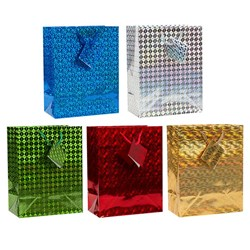 Gift Bag HOLOGRAPHIC Medium 17x22x9cm 6 Asstd Cols