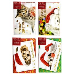Cards Xmas Box 10 115X177mm Textured Foil Cats Dogs