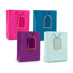 Gift Bag 210gsm SOLID COLS Embossed w Jhook Medium