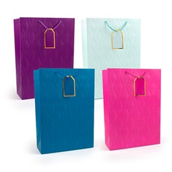 Gift Bag 210gsm SOLID COLS Embossed w Jhook XLarge